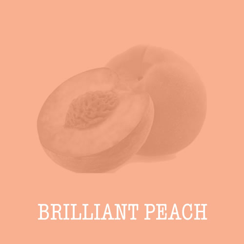 Brilliant Peach