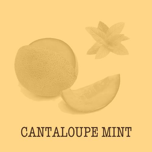 Flavor Cantaloupe Mint