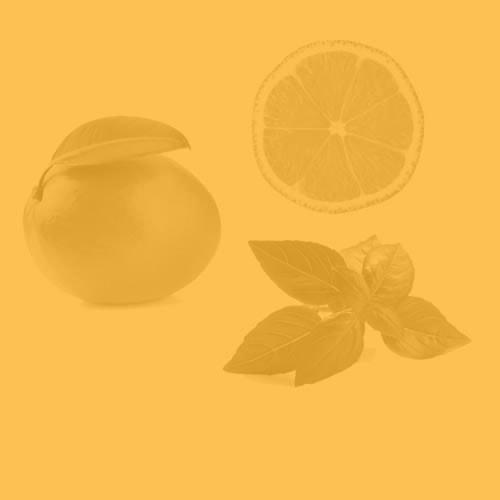 Mango Basil Lemon